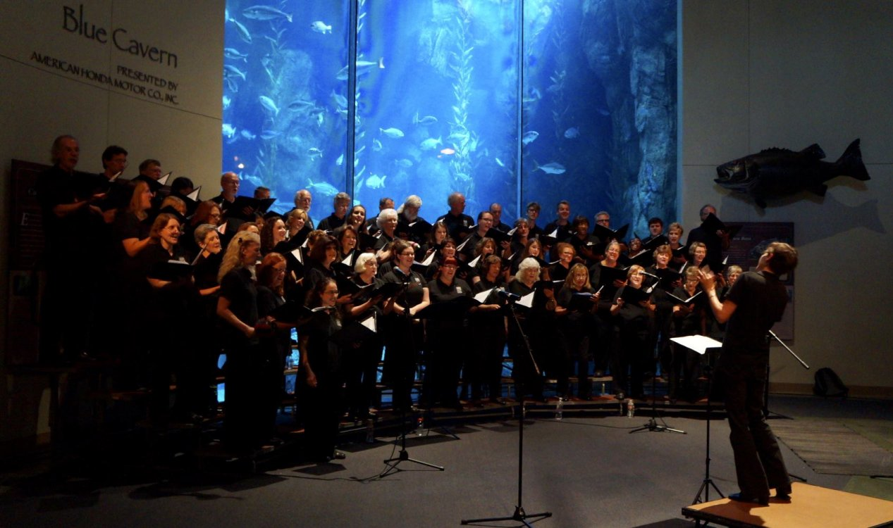 Long beach chorale chamber orchestra choir chamber for Chambre orchestra